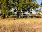 Gauteng, CULLINAN district, Rayton, Kaalfontein 513, farm cemetery_1