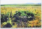 Mpumalanga, BALFOUR district, Rietfontein 648 IR, farm cemetery
