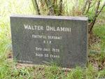 Kwazulu-Natal, ESTCOURT district, Drakensberg, Champagne Valley, Unknown farm cemetery