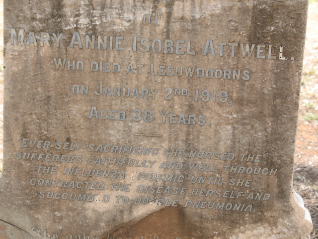 ATTWELL Mary Annie Isobel -1919
