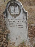 Western Cape, CALEDON district, Lange Kuil 525_1, Langkuil farm cemetery