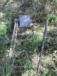 Limpopo, MOKOPANE district, Houtboschrivier 307, Houtbosrivier_2, single grave
