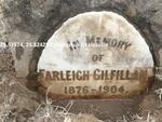 Free State, BOSHOF district, Dealesville, Kinder Dam 1611, Eerstegeluk_02, single grave
